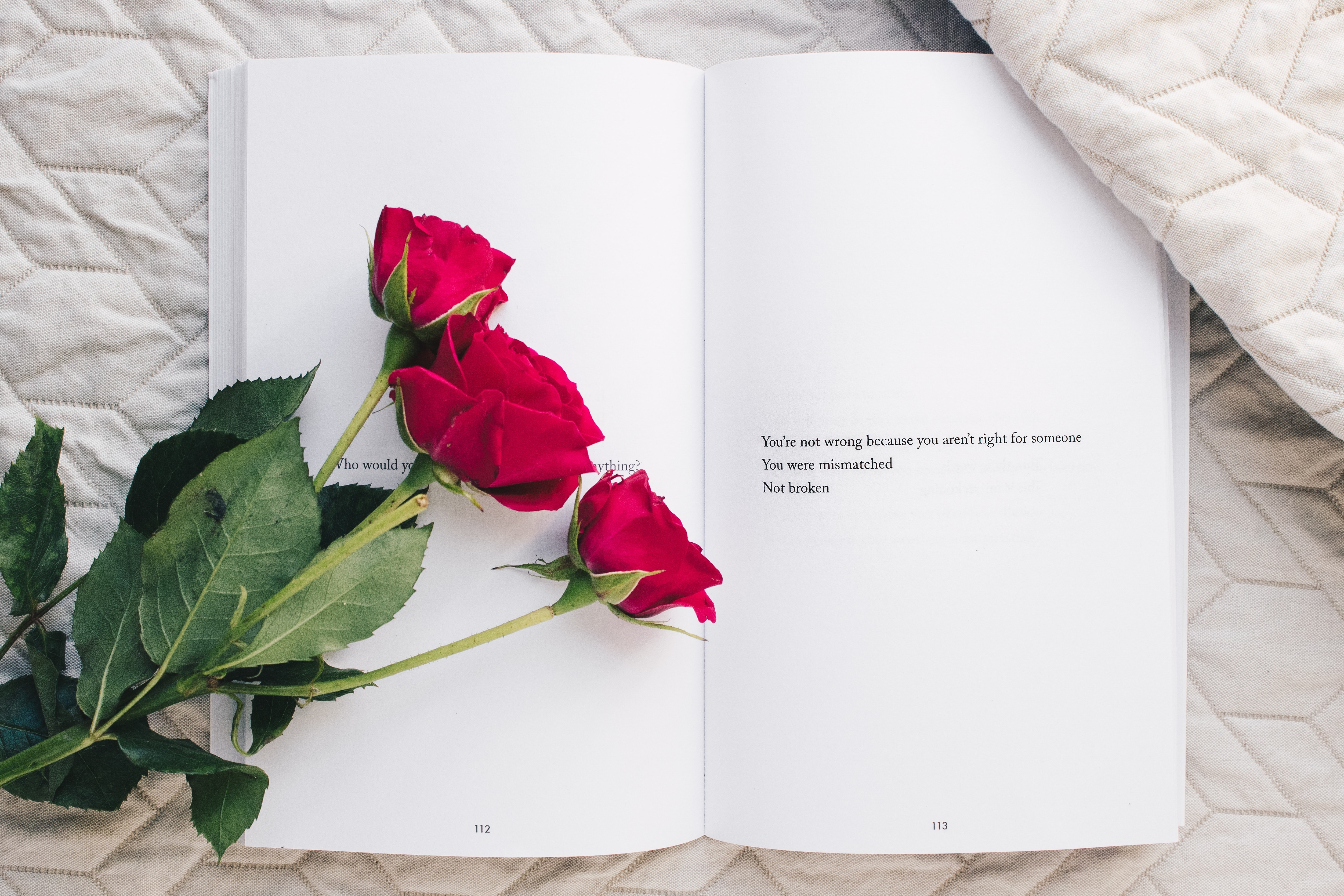 A book with a poem in opened on a bed with 3 red roses across the pages.