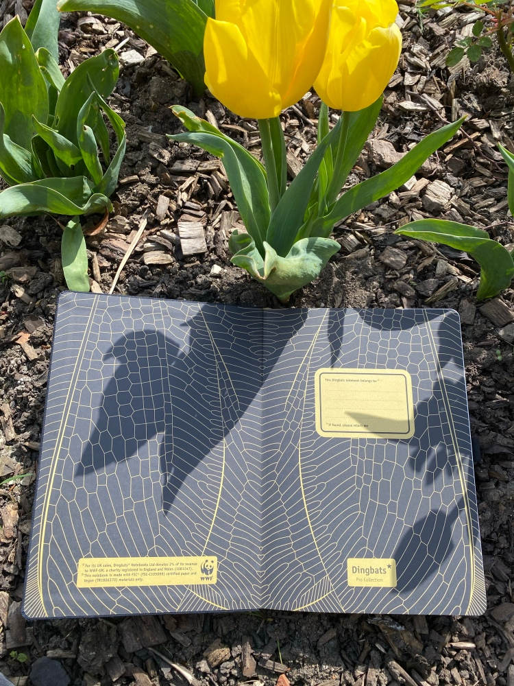 Dingbats Pro Collection Bee wings in the inner pages of the notebook. The bullet journal is black and gold.