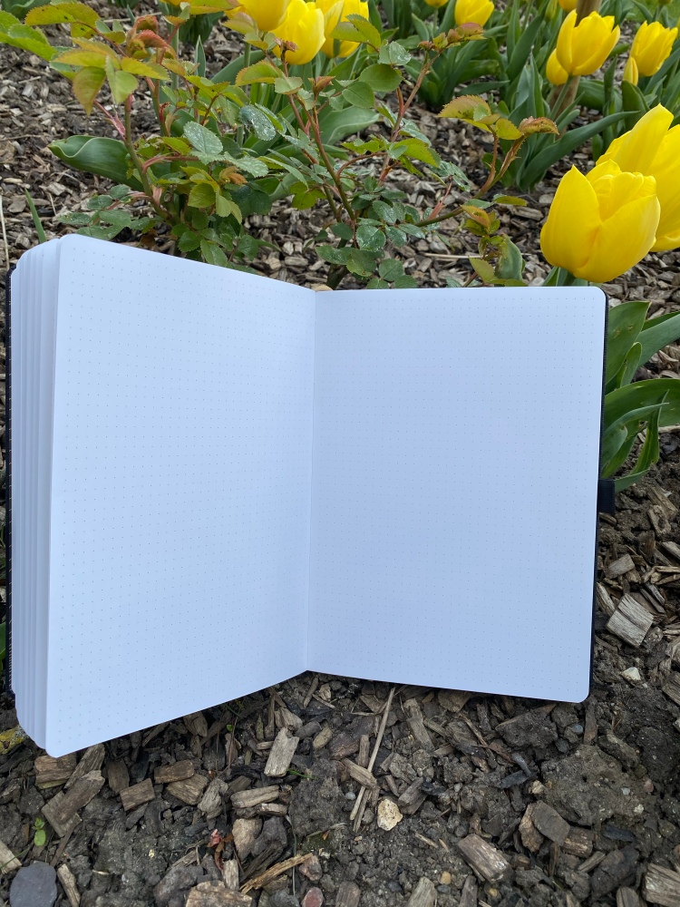 Dotted pages inside the Dingbats Pro Collection. The notebook is in bark and has tulips around.