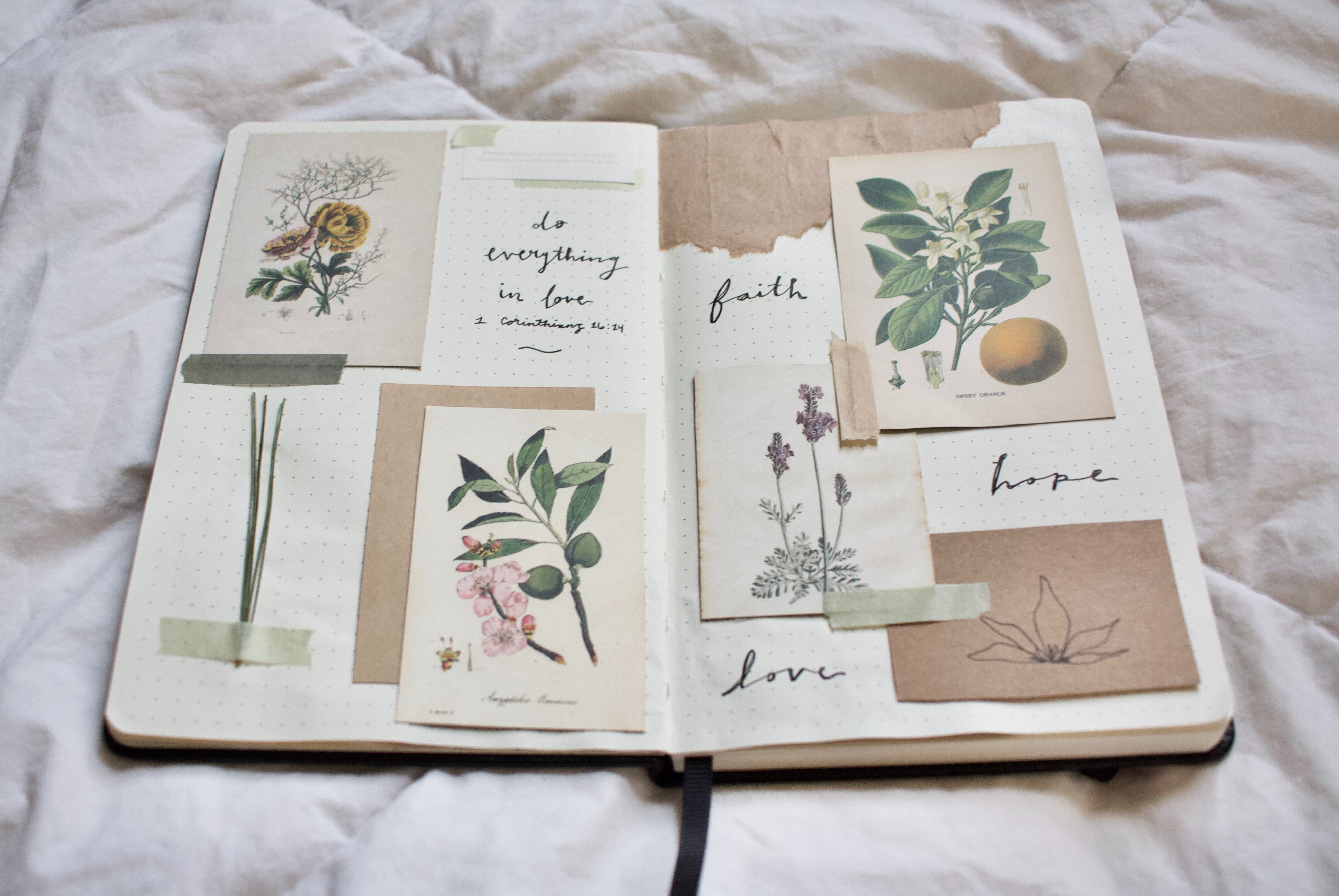 A bullet journal spread that has cut out pictures of flowers glued on to the pages with grass tapped onto the pages. with a quote and words written in black cursive ink
