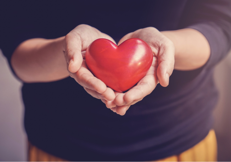 A person with their hands out together holding out a red heart