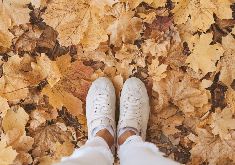 A person with trainers on standing in autumn coloured leaves